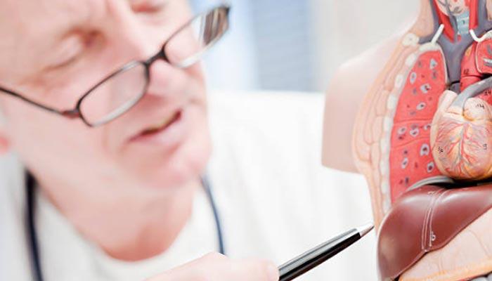especialidade-medica-para-apendice